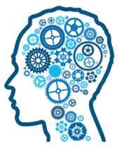 cogs in brain